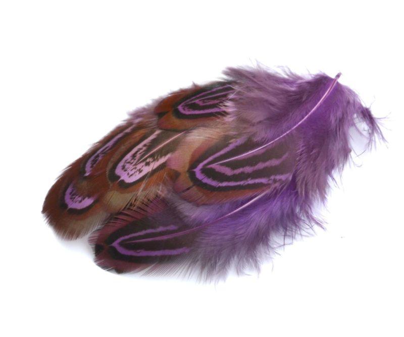 Barevné peří z bažanta fialové