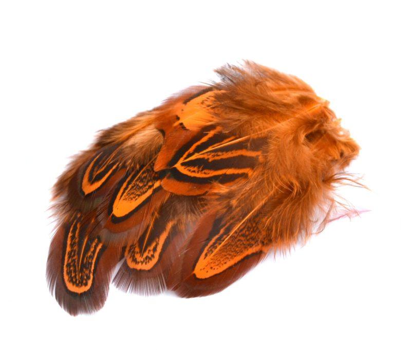Barevné peří z bažanta oranžové
