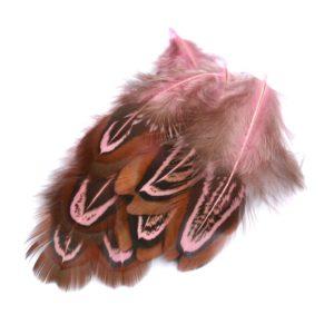 Barevné peří z bažanta růžové
