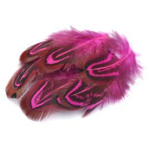 Barevné peří z bažanta tmavě růžové