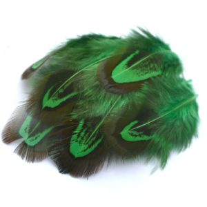 Barevné peří z bažanta zelené