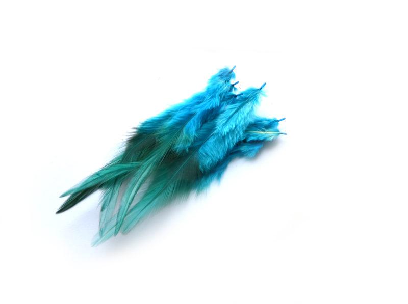 Kohoutí peří modré