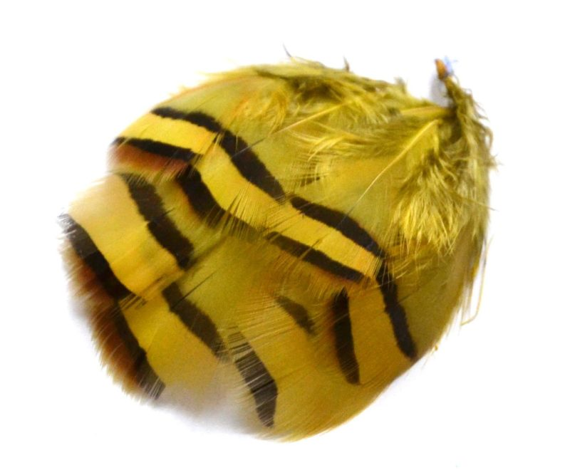 Peříčka z koroptve žlutá
