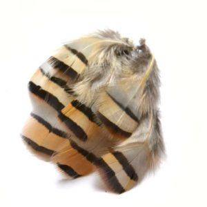 Peříčka z koroptve béžová