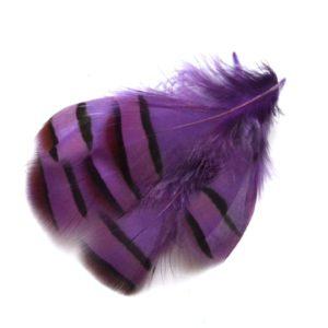 Peříčka z koroptve fialová