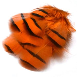 Peříčka z koroptve oranžová
