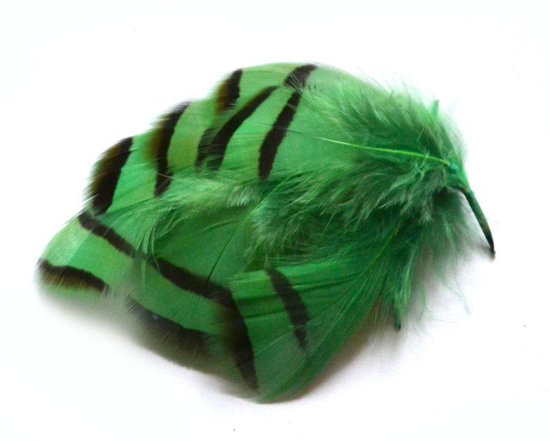 Peříčka z koroptve zelená