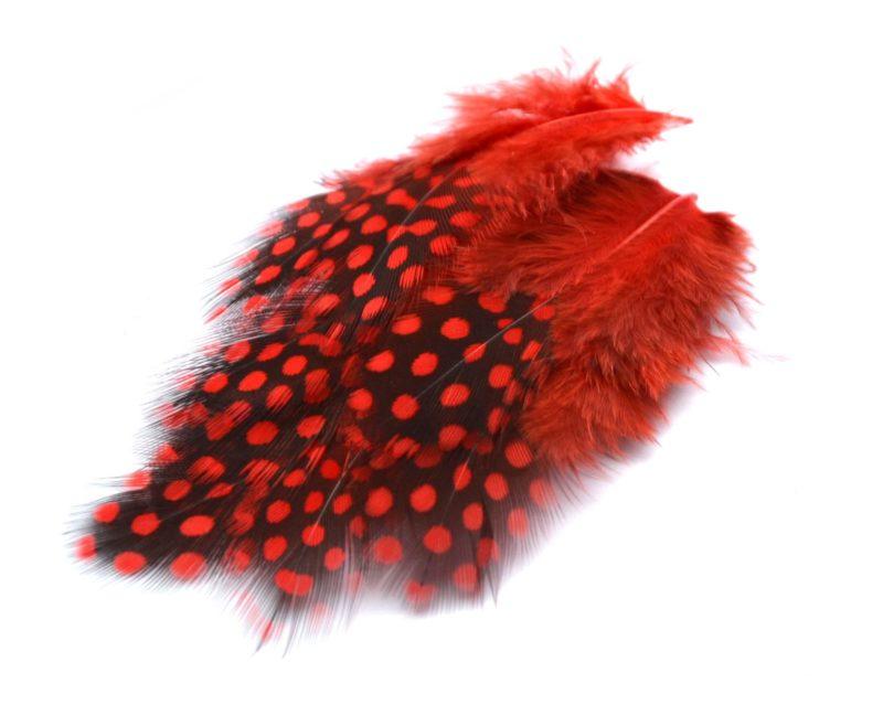 Perlička červená