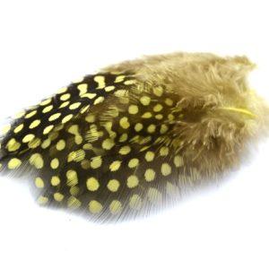 Perlička žlutá