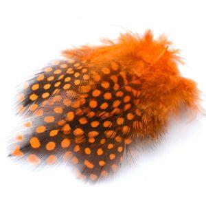 Perlička oranžová