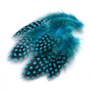 Perlička tyrkysová