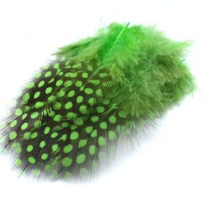 Perlička zelená